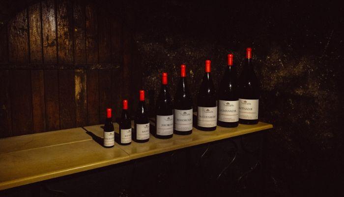 Multiple wine bottles of different sizes