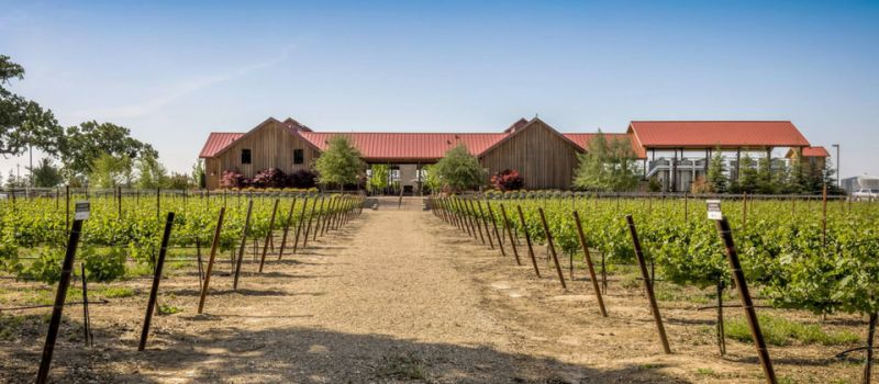 Photo for: Oak Farm Vineyards- Award Winning Small Lot & Premium Wines